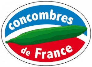 Logo concombre