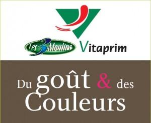 logo gout et couleurs